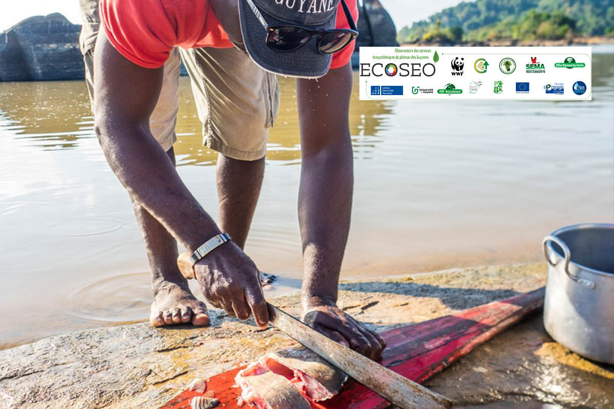 Comment évaluer les bénéfices apportés par la nature aux habitants du plateau des Guyanes ?